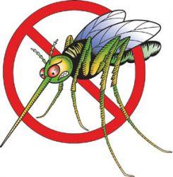 mosquito_color_index
