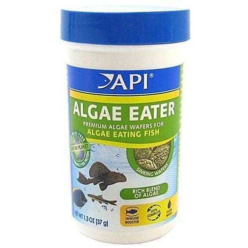 API Algae Eater Premium Algae Wafers