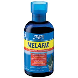Betta care bettafix betta medication arizona aquatic gardens for Betta fish medicine