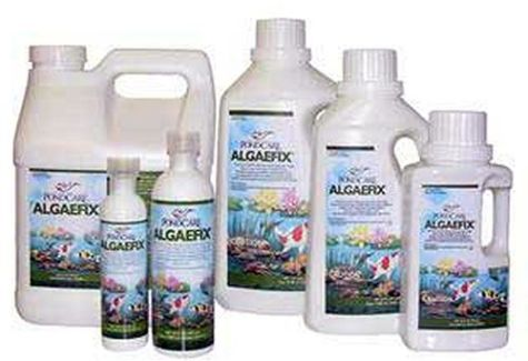 Algaefix Algae Prevention | Decorative Pond Safe