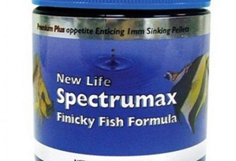 New Life Spectrum - Finicky Fish Formula