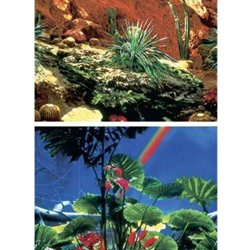 Penn-Plax Reptile Cactus Tank Backdrop