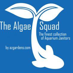 algaesquadlogo2016