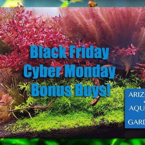 Black Friday Cyber Monday Bonus Deals