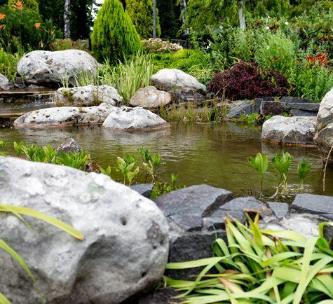 Pond Plant Habitat Packages
